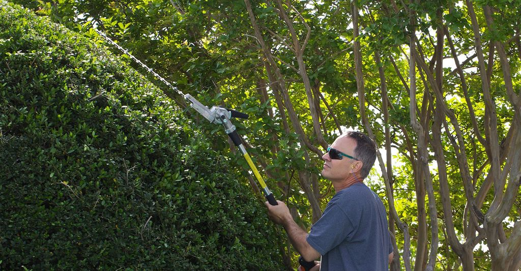 A hedge trimming professional in Lakeland, FL