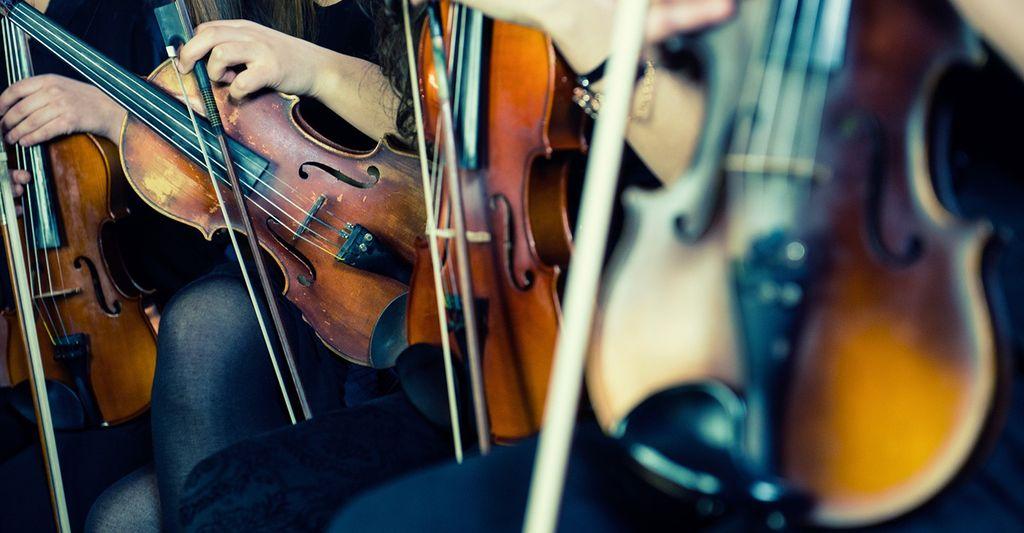 A wedding reception musician near you