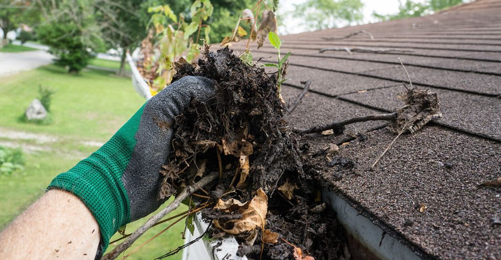 A roof gutter cleaner in Burnsville, MN