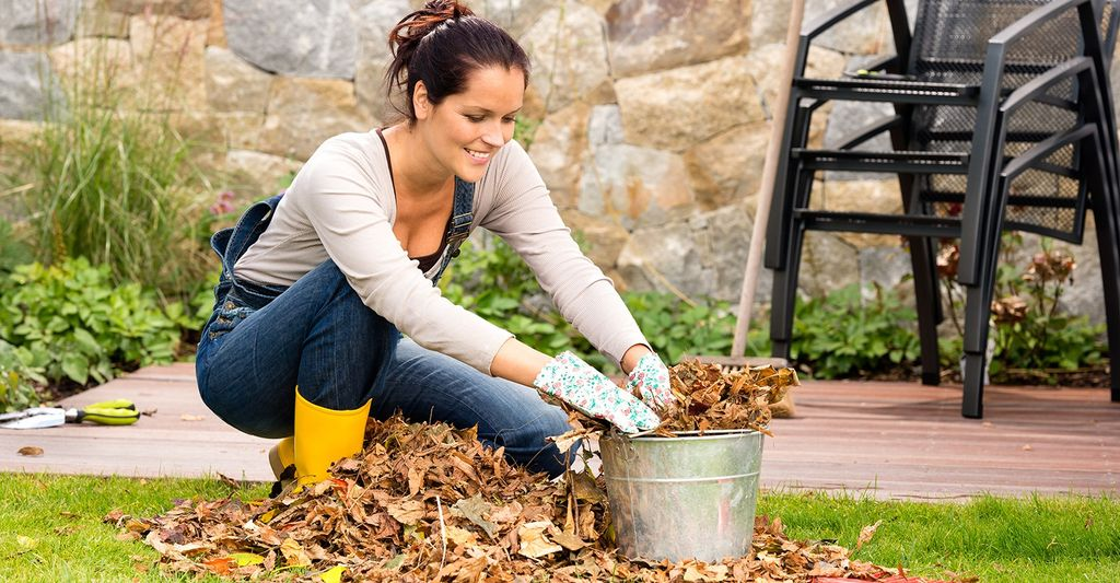 A leaf vacuum professional in Strongsville, OH