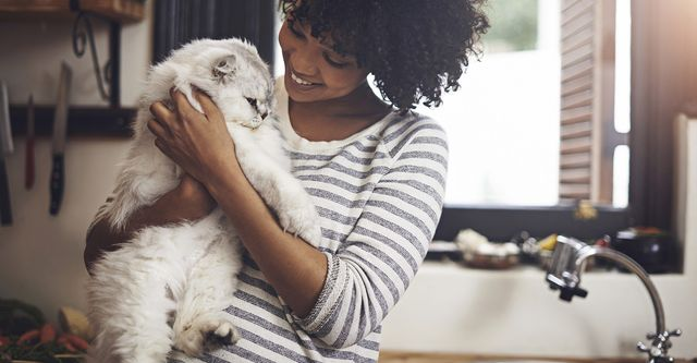 The 10 Best Cat Sitters in Fort Worth, TX (with Free Estimates)