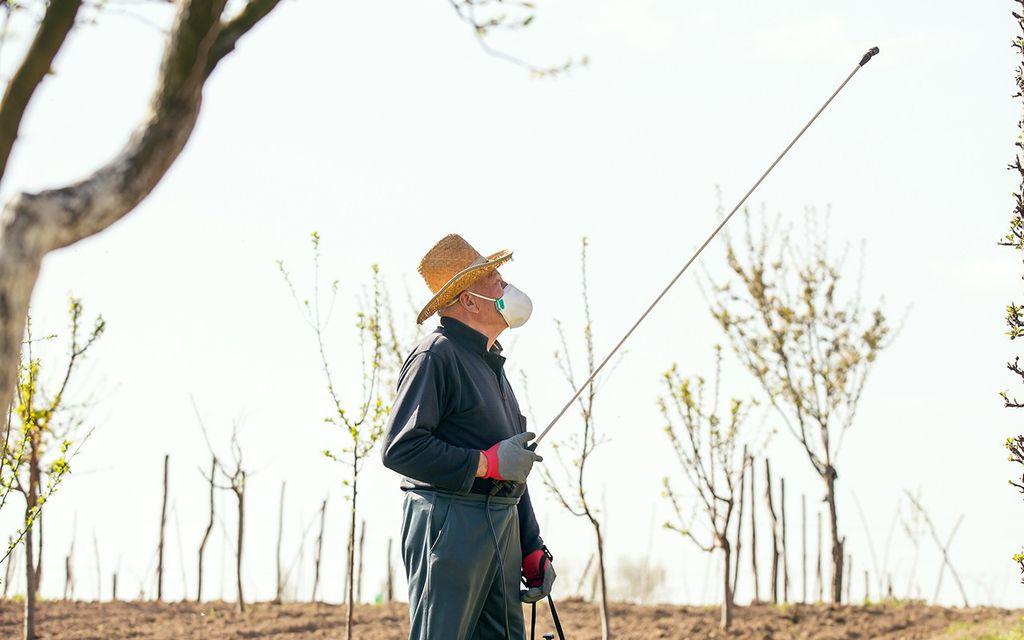 Outdoor pest control prices