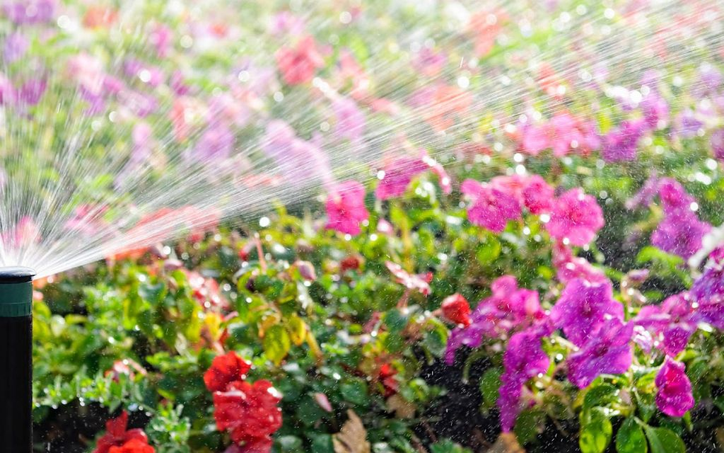 Sprinkler systems cost