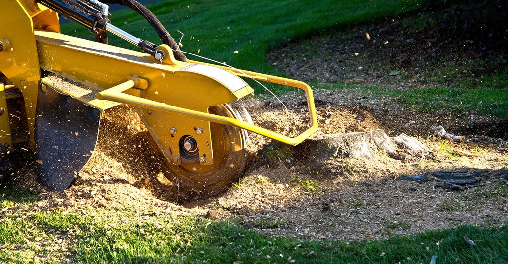 A stump grinding professional in Lindenhurst, NY