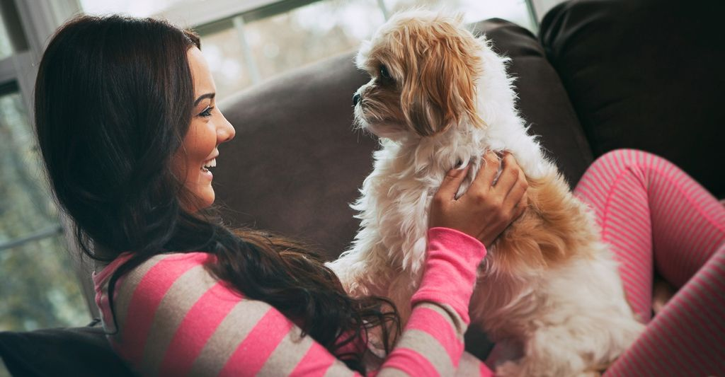 A professional pet sitter in Waukegan, IL