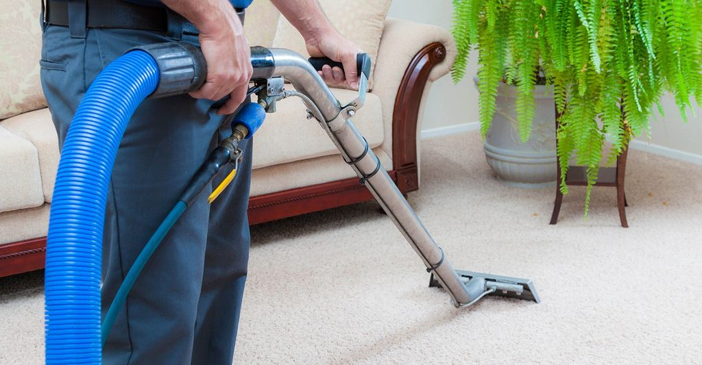 A carpet and upholstery cleaner in Seminole, FL