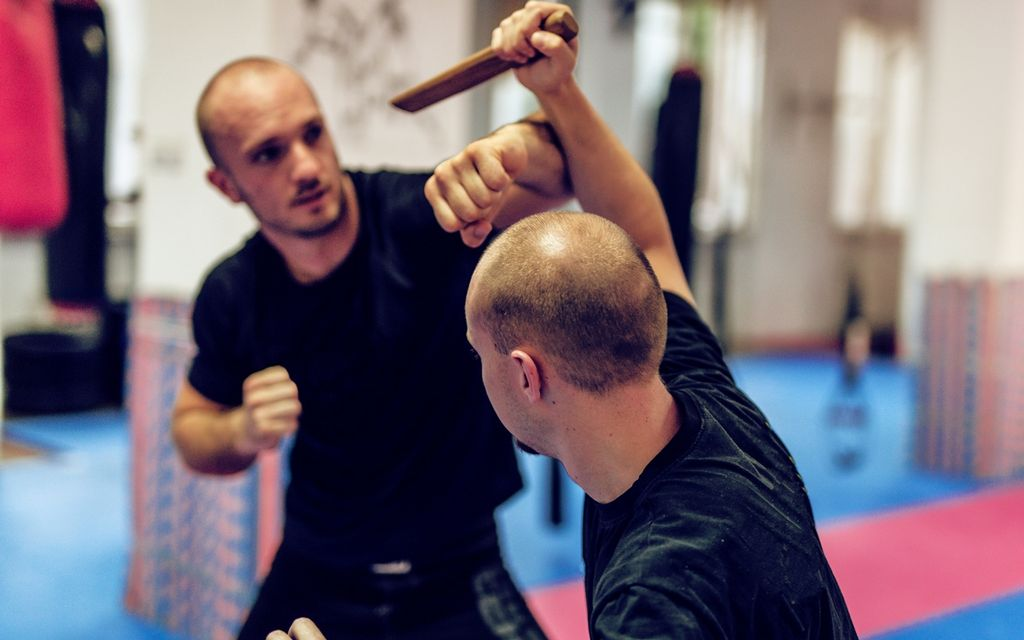 Self defense lessons prices
