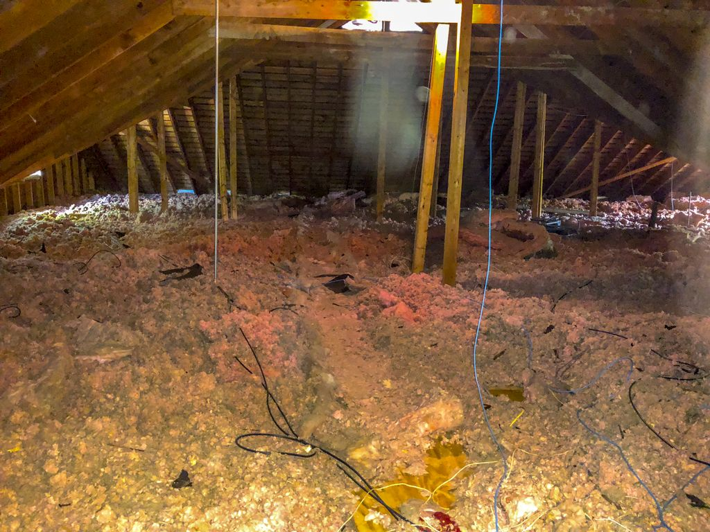 Attic insulation removal and installation
