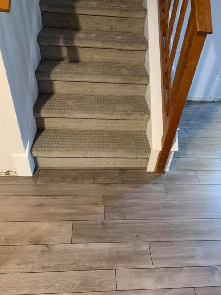 Completed Carpet Jobs