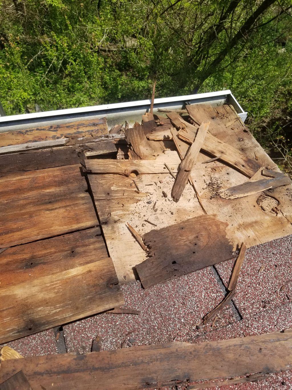 Fascia and roof deck , shingle repair
