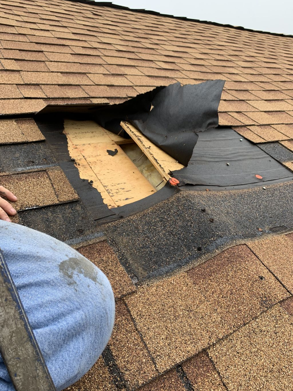 Neighbor shingle repair