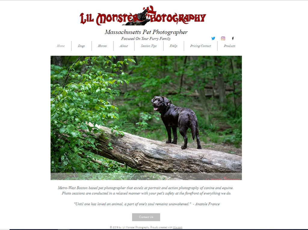 Pet Photography Website Redesign