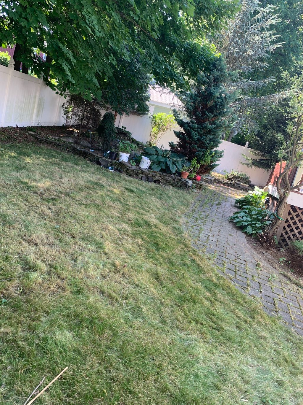 Yard clean up and mulch