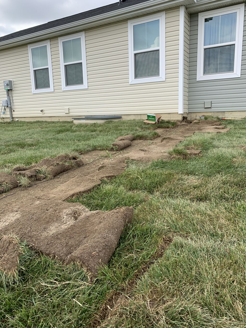 New build after Sod install