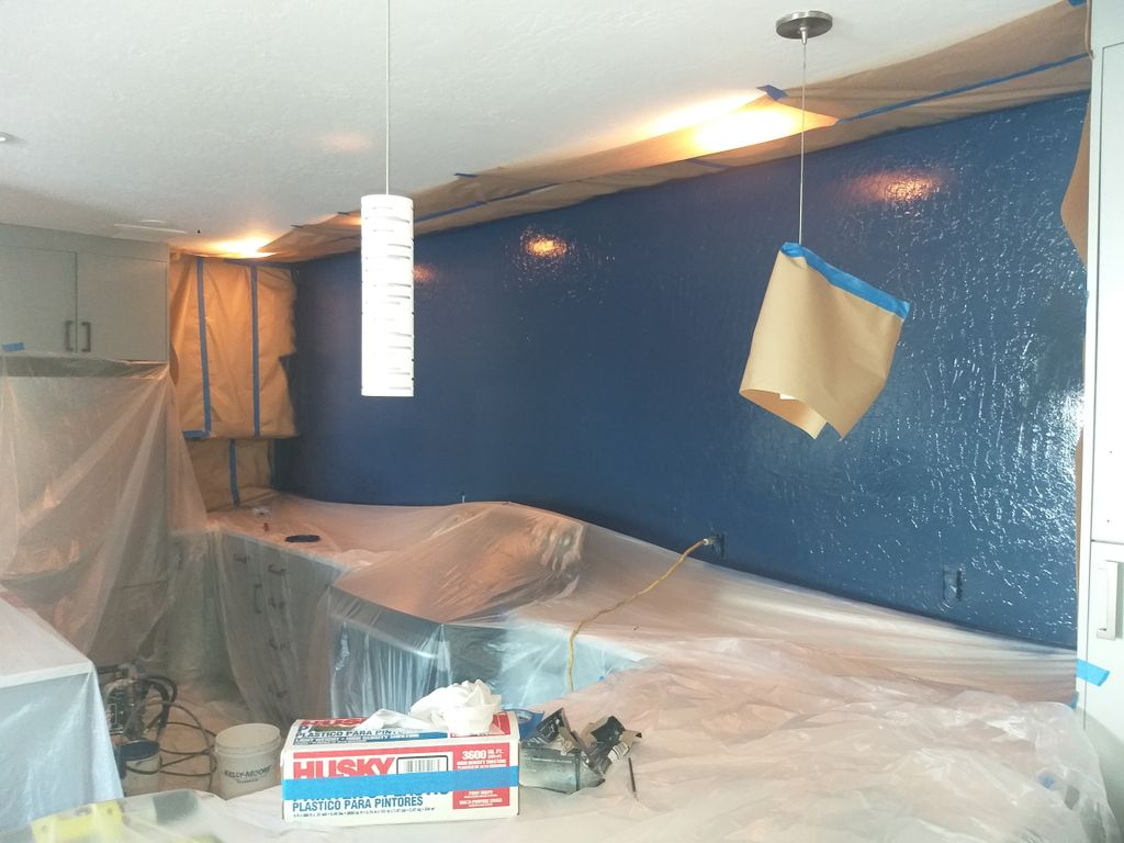 Interior Condo Repaint All Walls, Ceiling, Door and Trims