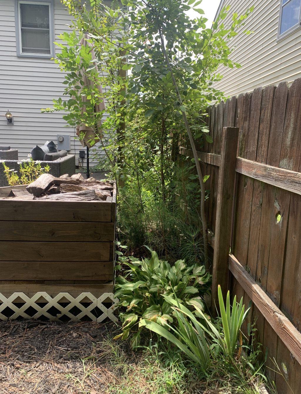 Outdoor Landscaping and Design - Virginia Beach 2019
