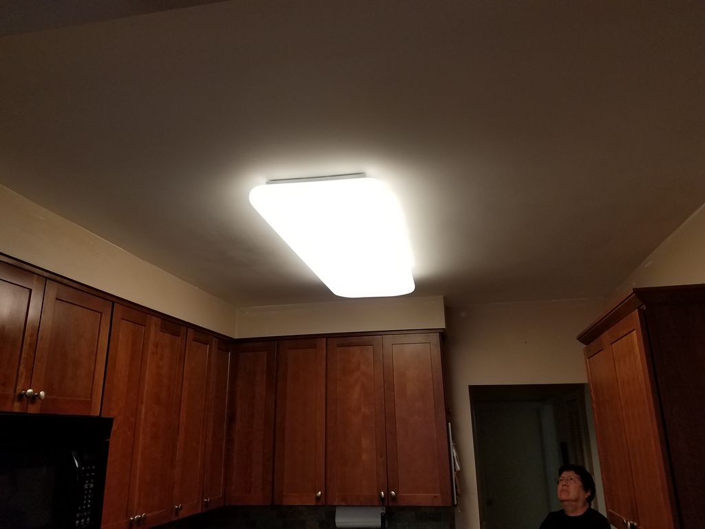 Ceiling painting and new light fixture installation